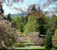 The Macrosty Park, Crieff