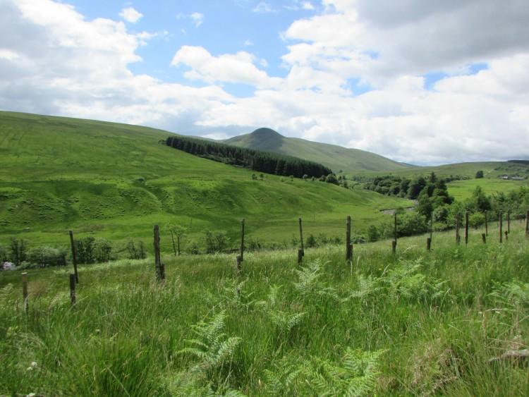 Glen Artney Nature Walk