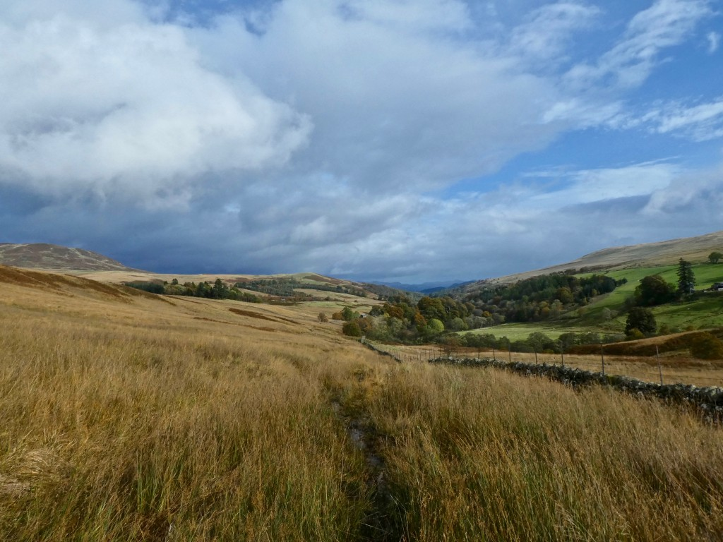 Image 05 – Looking back from Glen Artney, Walk with naturalist