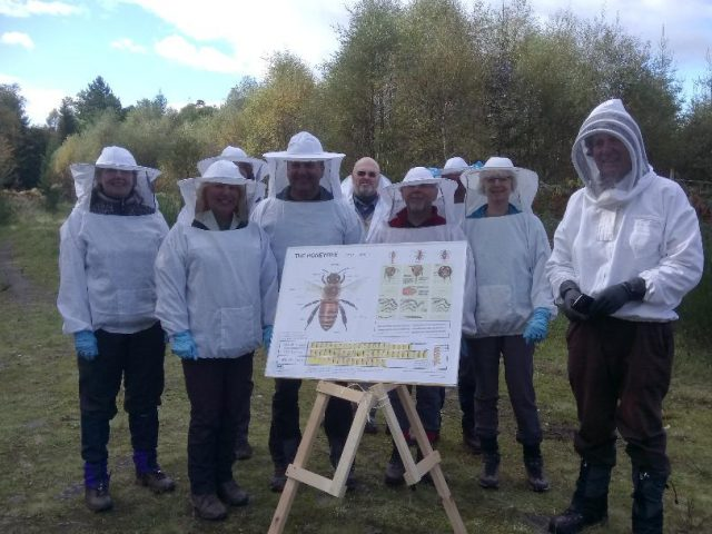 Walk With A Beekeeper And Visit An Apiary (2)