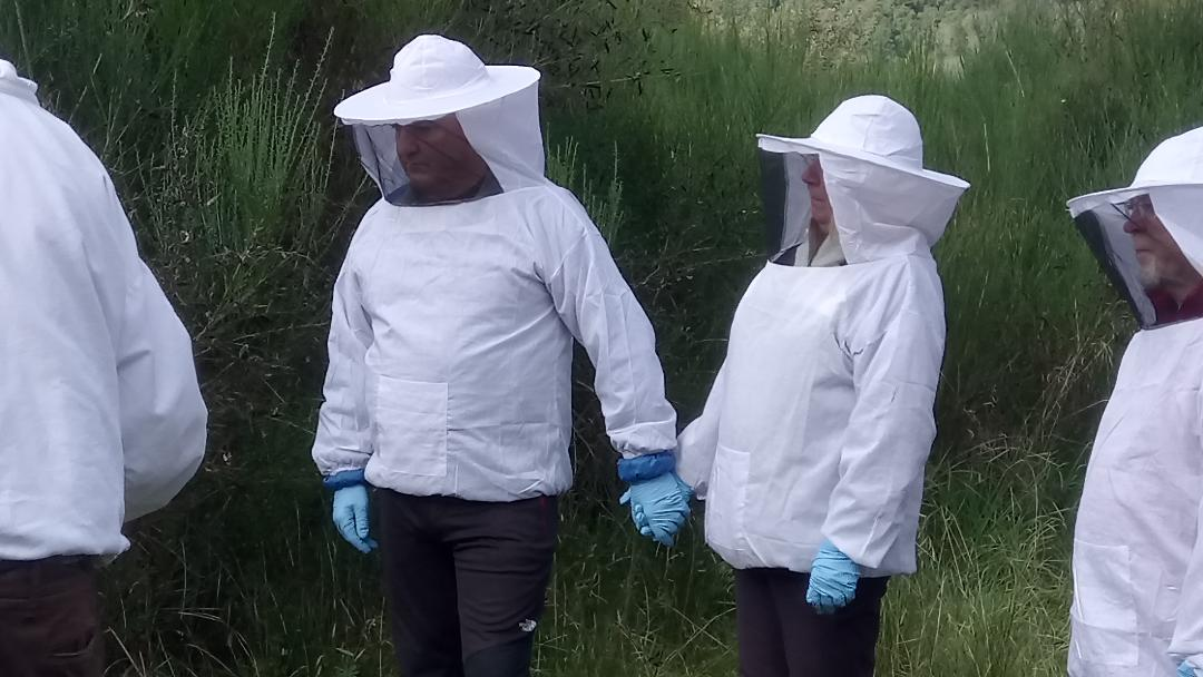 Image 16 – Bees John and Julie-Awwwww