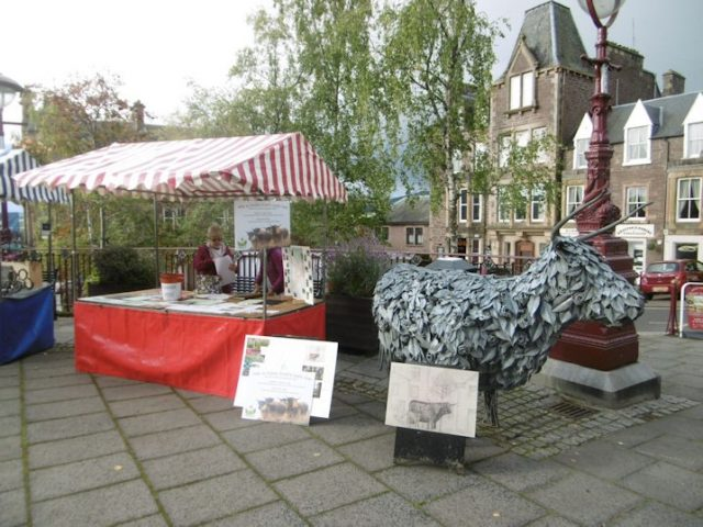 Highland Cattle Sculpture Unveiling