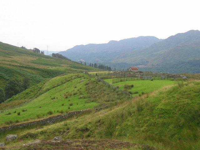 Walking With The Shepherdess Above Glen Tarken