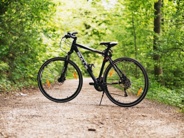 Social Family Bike Ride