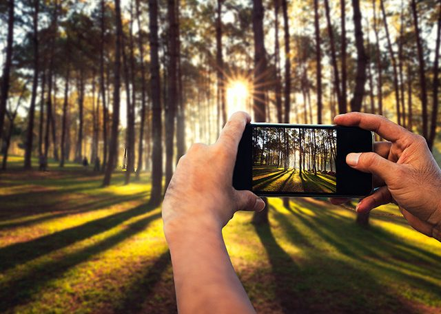 Top Tips For Smartphone Photography